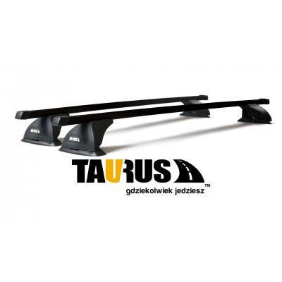 Taurus CarryUp hliníkový lúč 120cm